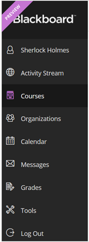 Screen Shot of Blackboard Ultra Base Navigation