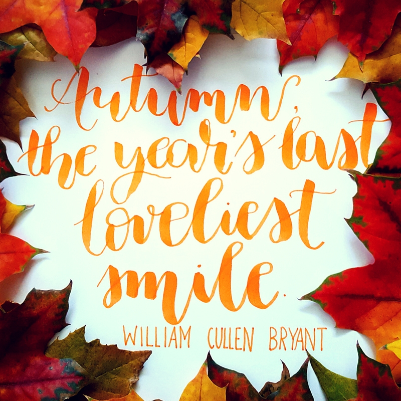 Autumn, the year's last loveliest smile -by William Cullen Bryant
