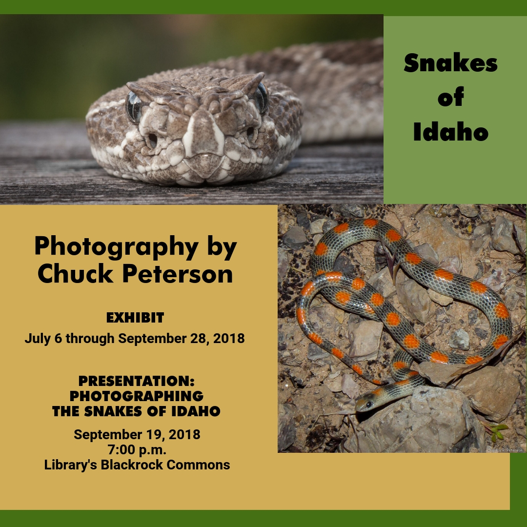 Snakes of Idaho, photography by Chuck Peterson