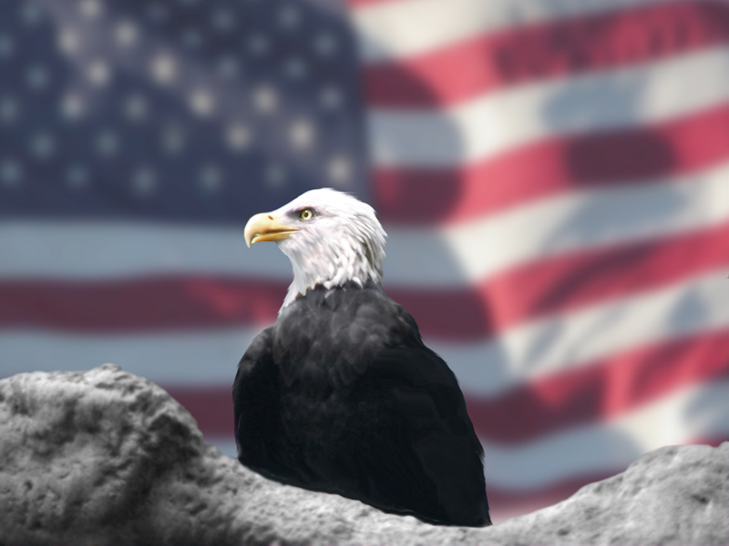 Image:  American Flag and Eagle