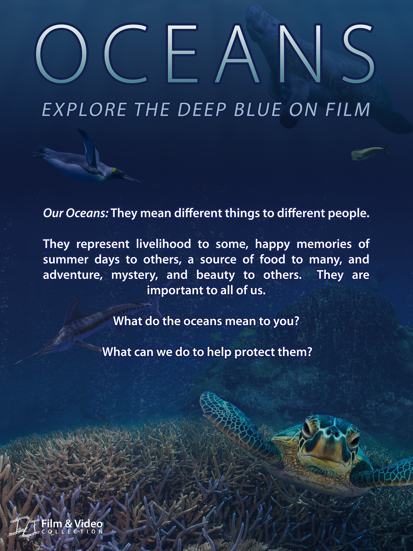 Poster for Film & Video Oceans display