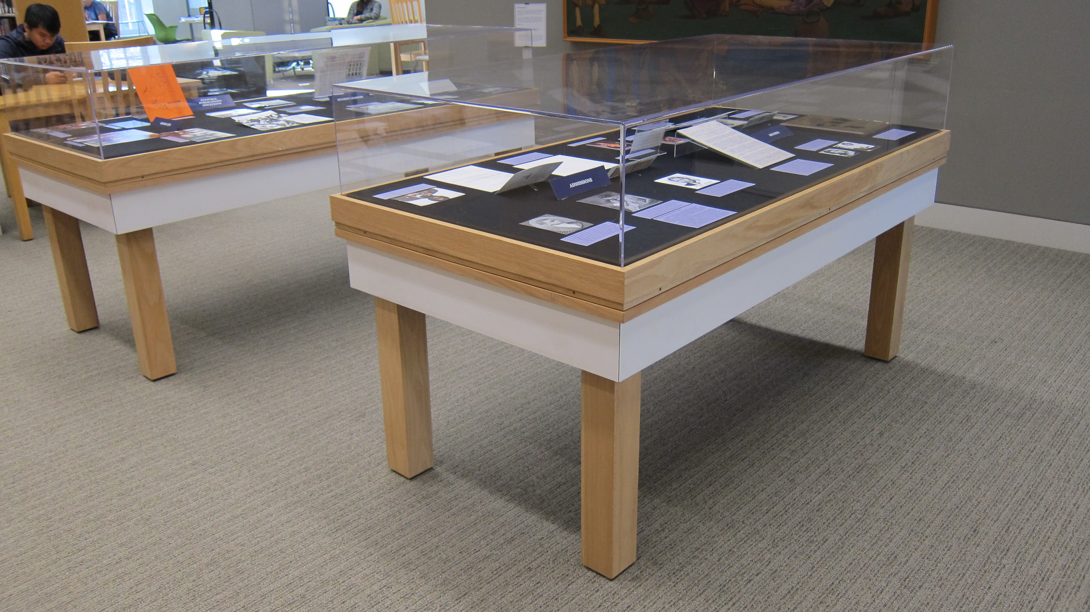 Picture of exhibit cases of By the People for the People