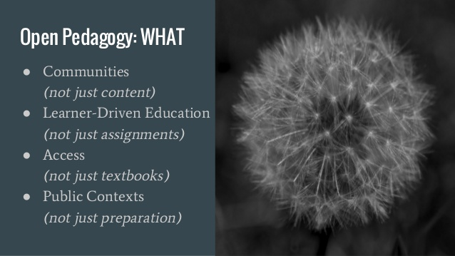 Open  Pedagogy Slide