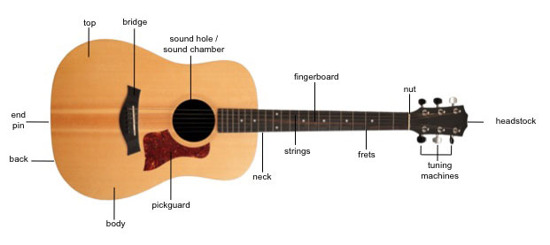 labelled picture of parts of a guitar