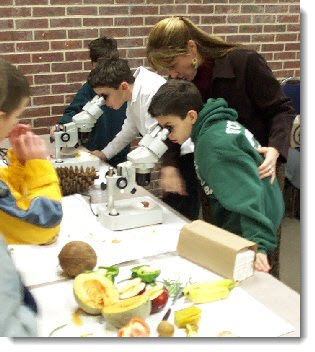 Photo of Children looking through microscopes with teacher observing