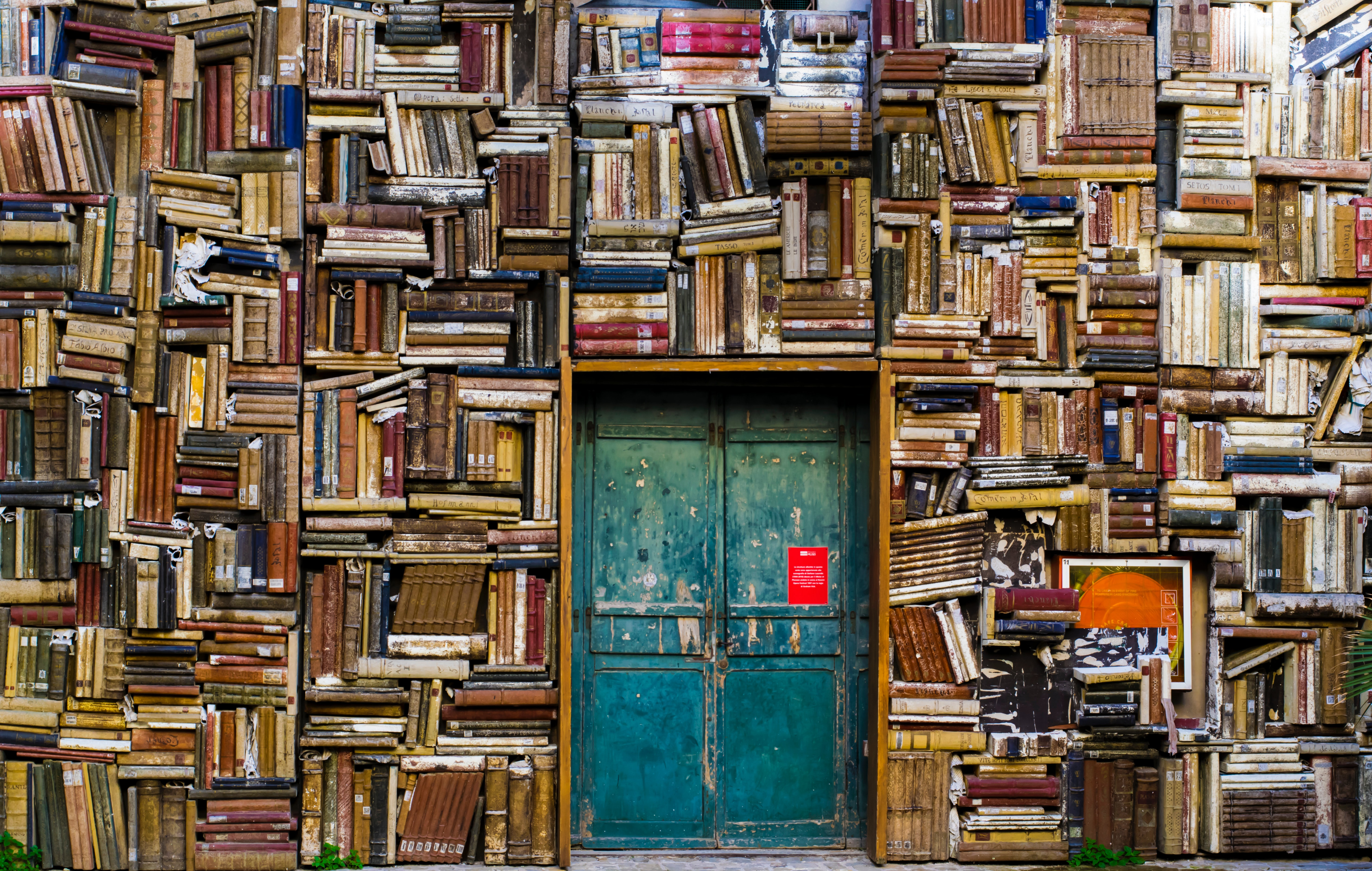 Picture of a wall of books with a blue door in the center.