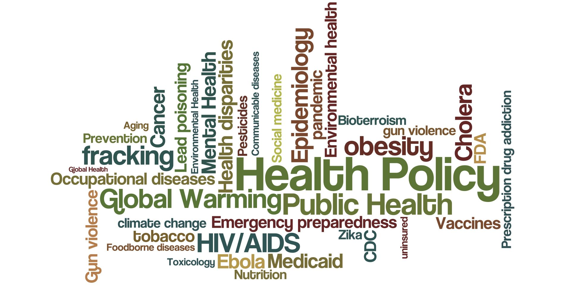 Health Policy Wordle