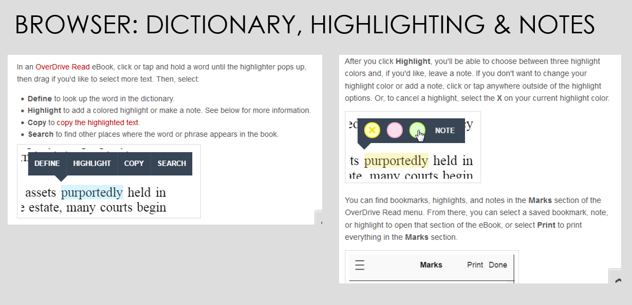 Dictionary, highlighting and notes
