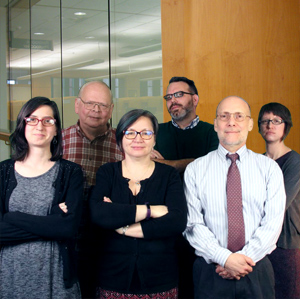 Library Research Team