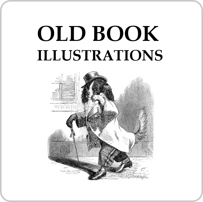 Old Book Illustrations