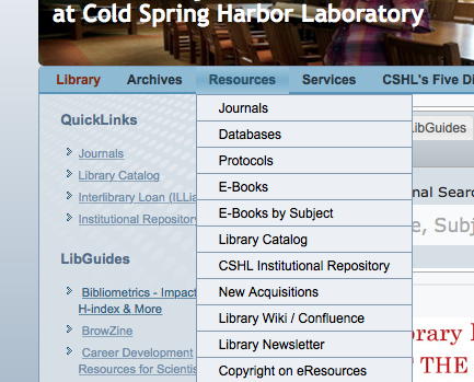 Library website screen grab