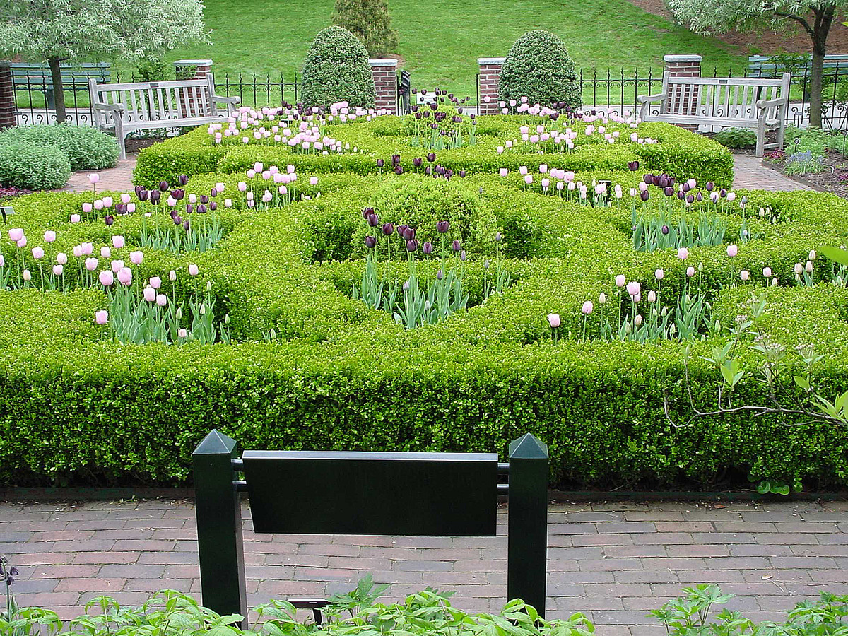 View of the NYBG Herb Garden; photo by Muriel Wienerman