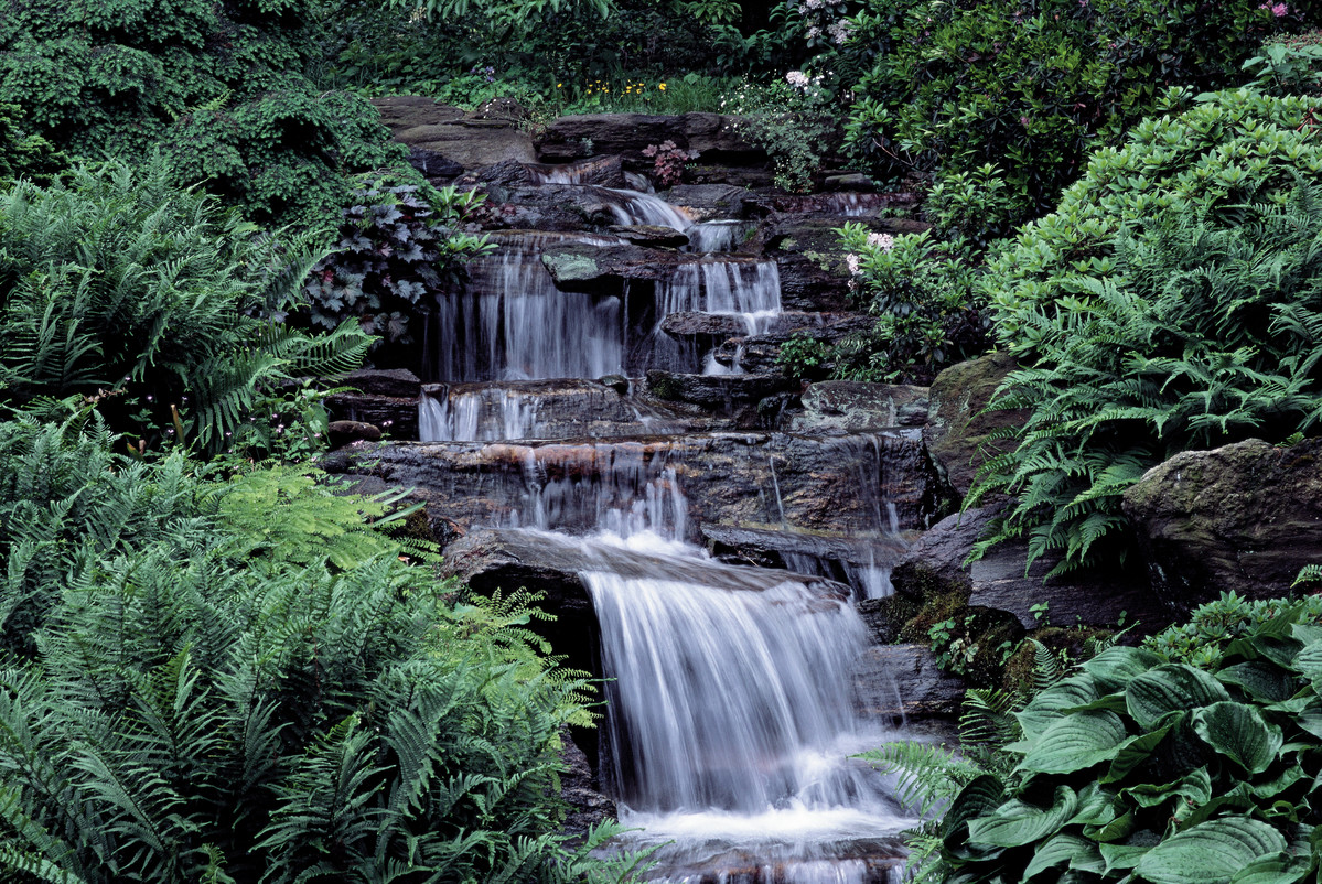 Water falling over rocks creates a feature in NYBG Rock Garden