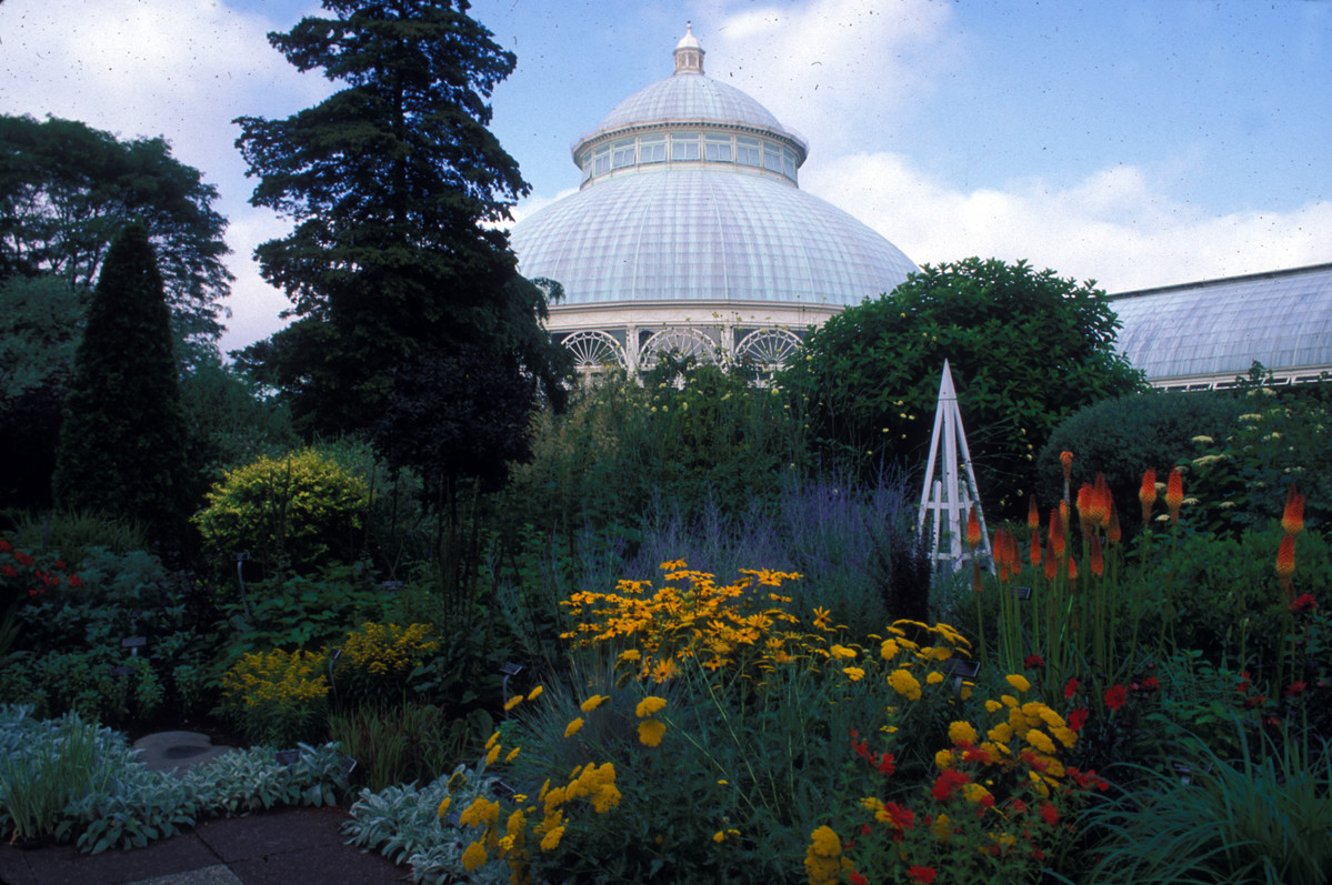 Tuteur in Perennial Garden at NYBG