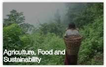 Browse Agriculture, Food and Sustainability