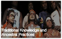 Browse Traditional Knowledge and Ancestral Practices