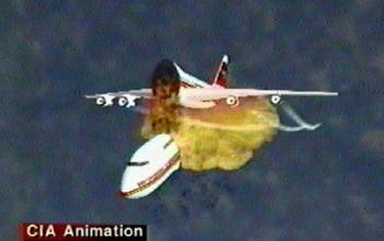 Browse  TWA Flight 800 Case Study
