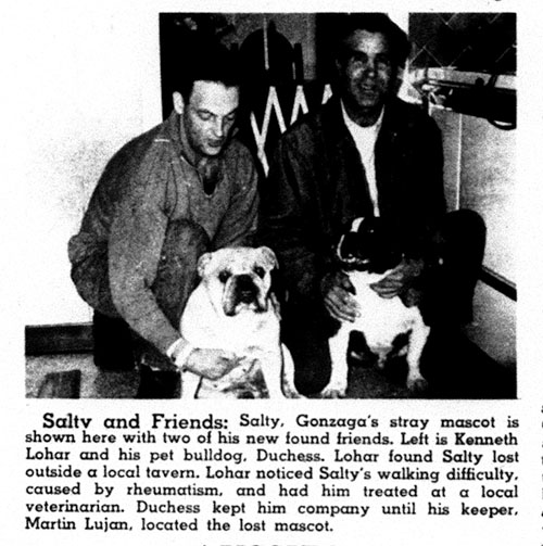 Salty discovered after brief disappearance, 1966