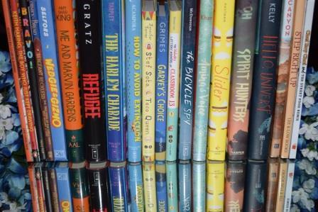 picture of bluebonnet books on shelf