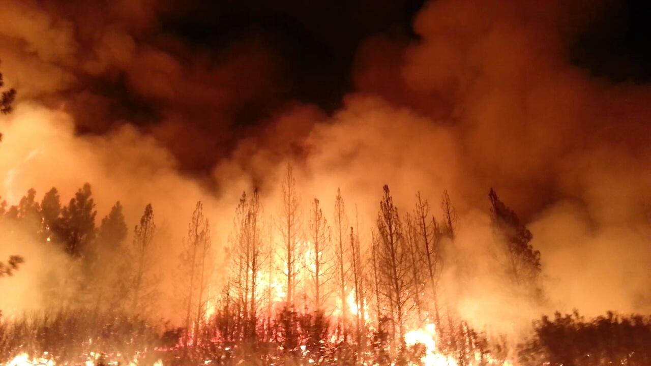 The Rim Fire consumed more than 250,000 acres (100,000 ha) of forest near Yosemite National Park, in 2013