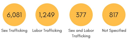 Infographic. Sex trafficking: 6,081. Labor trafficking: 1,249. Sex and labor trafficking: 377. Not Specified: 817.