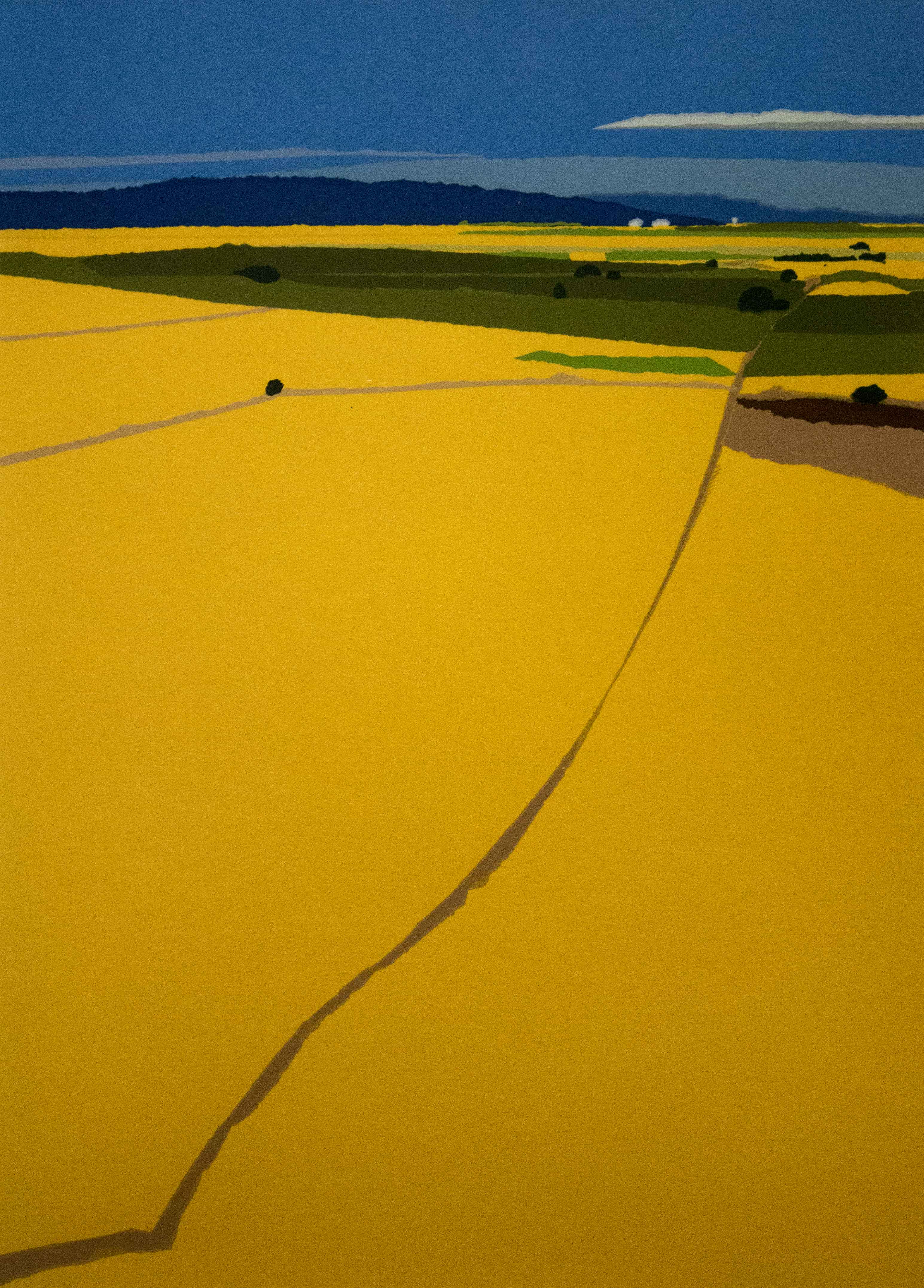silk screen image of wheat fields from an aerial angle