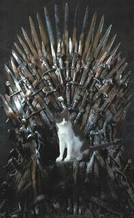 Mr. Puddles on the Iron Throne