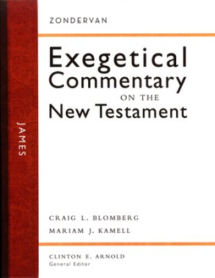 Cover image for James: Zondervan Exegetical Commentary on the New Testament