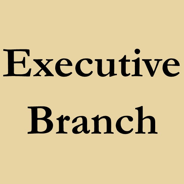 Executive Branch (Black text on gold ground).
