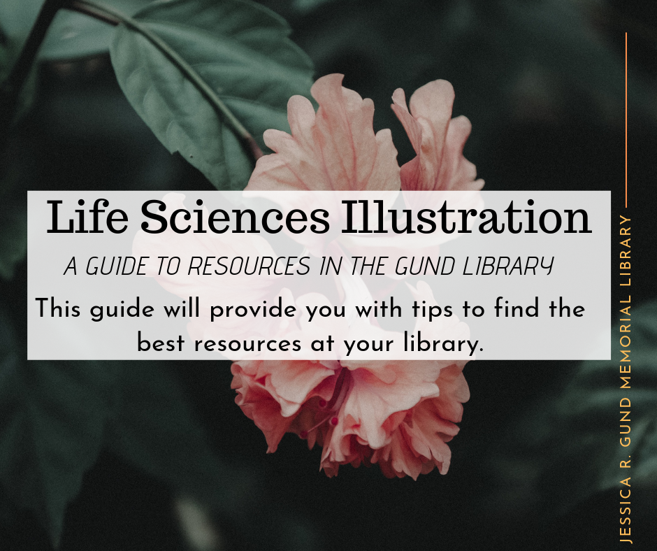 Life Sciences Illustration A guide to resources in the Gund Library This guide will provide you with tips to find the best resources at your library