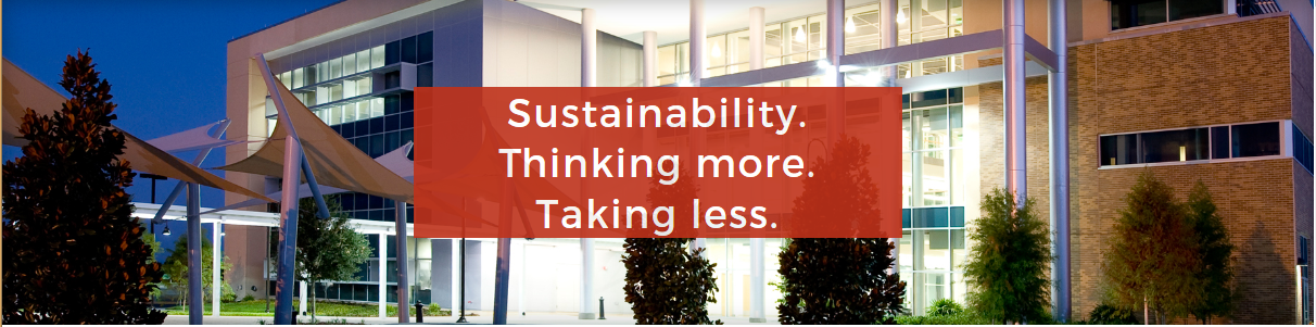Sustainability header image