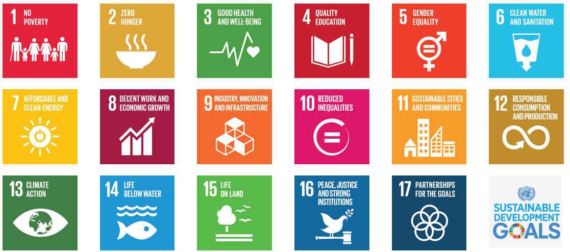 United Nations Sustainable Development Goal Graphic