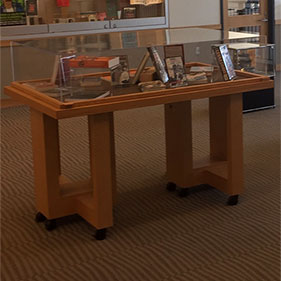 Photo of the 3rd floor large case display