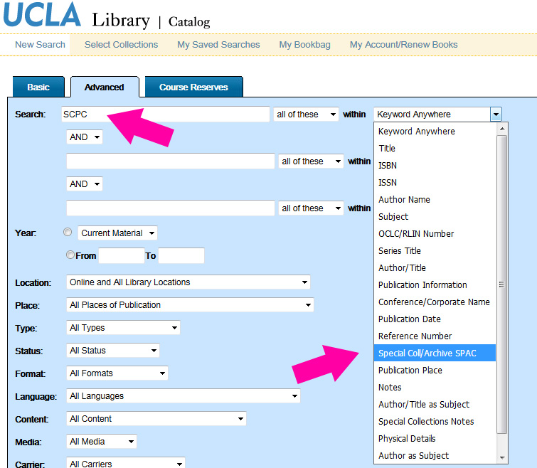 Library Catalog image illustrating how to locate punk materials