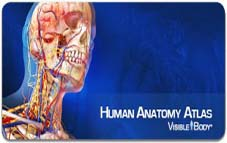 Visible Body general human anatomy