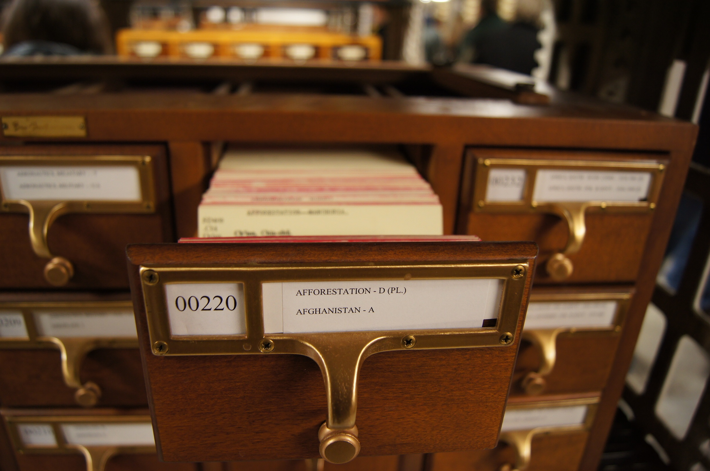 card catalod drawer