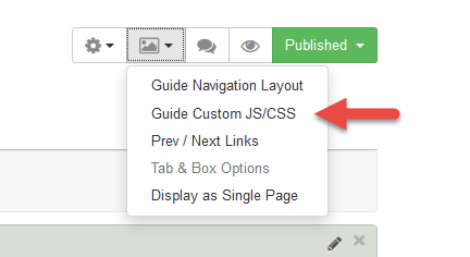 Guide Custom JS/CSS option is listed under the Guide Layout menu