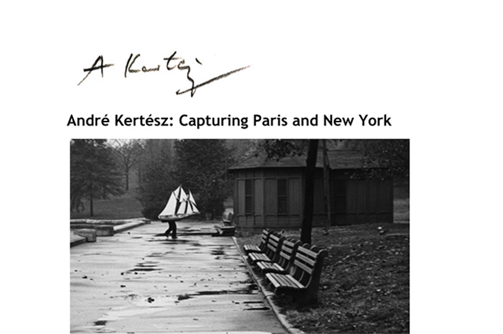 Kertesz Project website