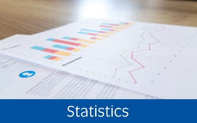 Navigate to statistics page