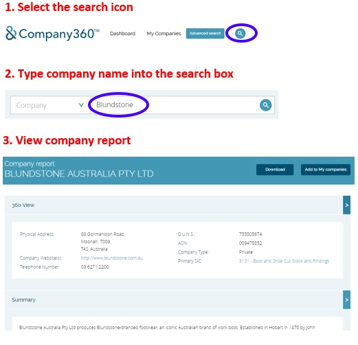 Company360 search example