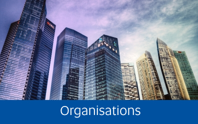 Navigate to teh Organisations page within this guide