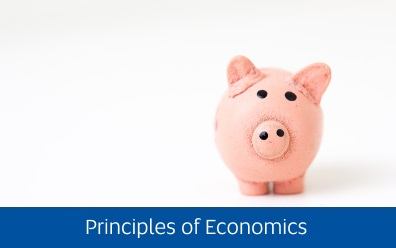 Navigate to the Peer Assisted Study Sessions page for help with Principles of Economics