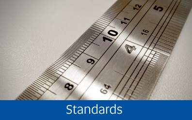 Navigate to the Standards page within this guide