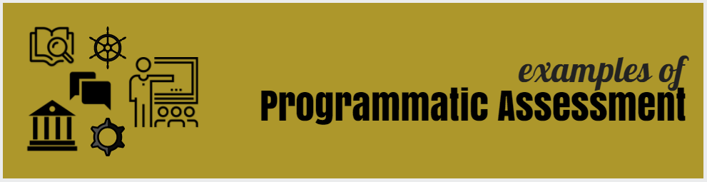 examples of programmatic assessment