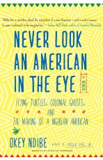 Audiobook cover for Never Look an American in the Eye by Okey Ndibe