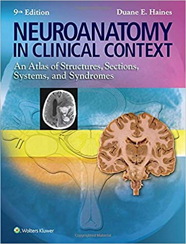 Neuroanatomy in clinical context