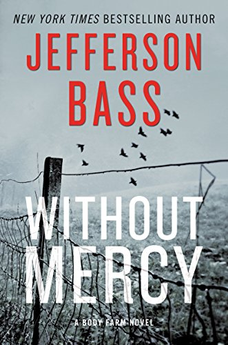 Without mercy novel