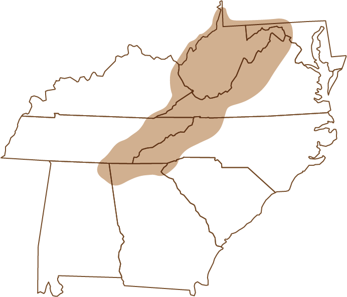 Map from https://flyfishingmuseum.org/ of Appalachian Region of US