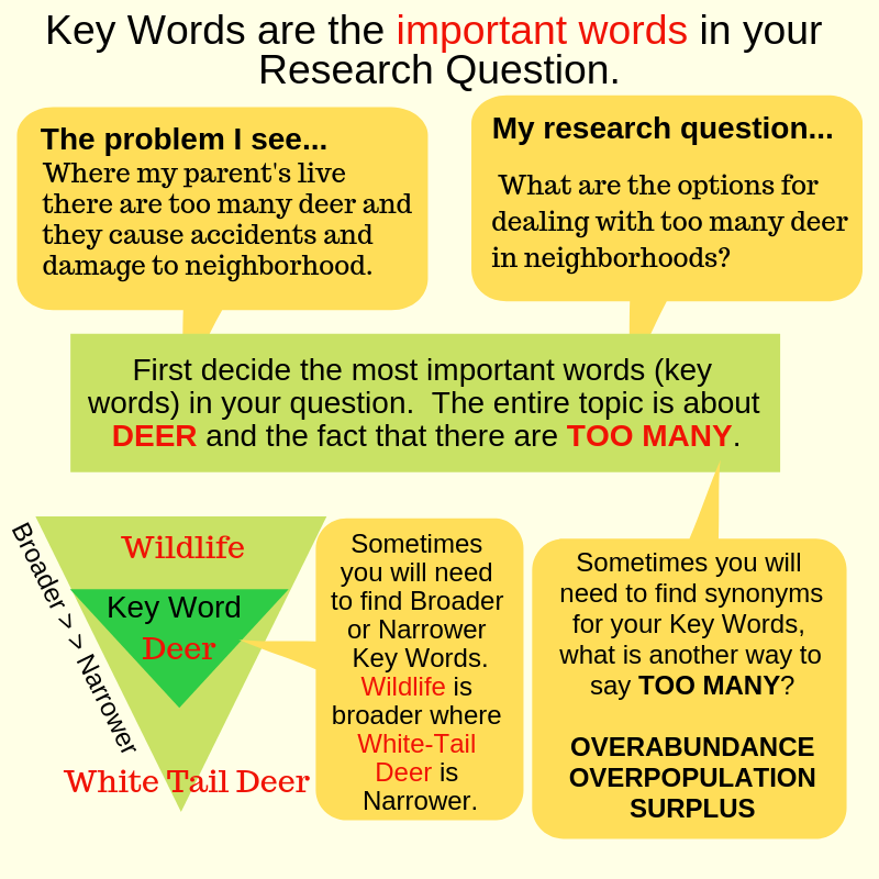 What is a key word infographic