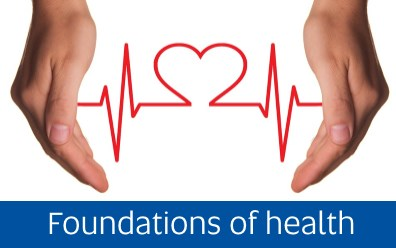 Link to Foundations of Health <Image, public domain>